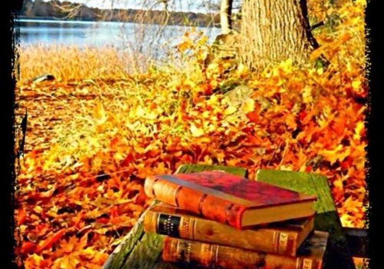 Risultato immagini per libri e autunno